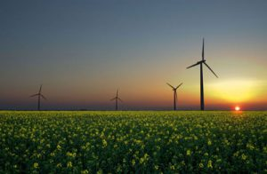ظرفیت نصب شده نیروگاههای تجدیدپذیر به ۷۳۹ مگاوات رسید/ انرژیهای نو مانع انتشار ۲ میلیون تن گاز گلخانهای در کشور شده است
